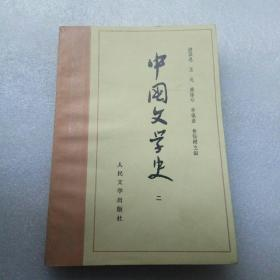 中国文学史(二)