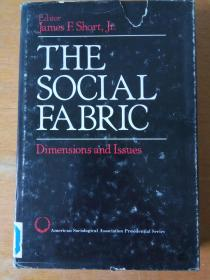 The social fabric:dimensions and issues(社会结构)