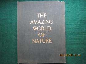 英文原版:the amazing world of nature