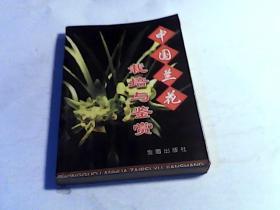 中国兰花栽培与鉴赏