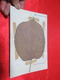 Mulberry     锛堝皬16寮�锛� 銆愯瑙佸浘銆�
