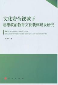 文化安全视域下思想政治教育文化载体建设研究 正版 王景云  9787010143019