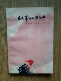 红色小说: 在大革命的洪流中 (1977年一版一印)