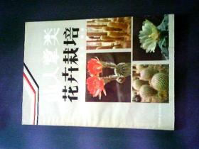 仙人掌类花卉栽培
