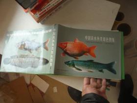 中国淡水鱼类原色图集 第一集 私藏