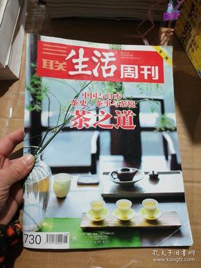 三联生活周刊2013年第15期总第730期