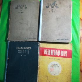 解剖学2,3,最新人体寄生虫学提要,病理解剖学简图四册合售