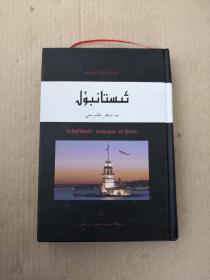 伊斯坦布尔 一座城市的记忆 精装 维吾尔文