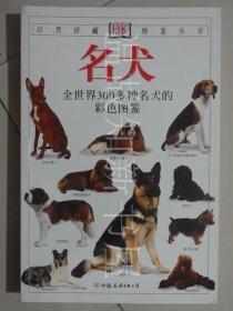 名犬:全世界300多种名犬的彩色图鉴  (正版现货)