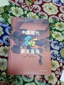 中国现代名医验方荟海