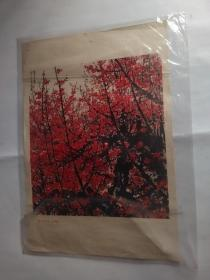 俏不争春(中国画)关山月 作
