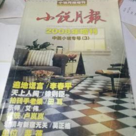 小说月报2008年增刊 中篇小说专号 3