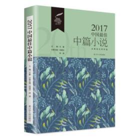 【正版】2017中国中篇小说 林建法,林源