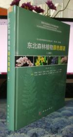 东北森林植物原色图谱 上册  缺下册  (精装)实物图