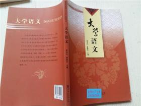 大学语文 袁玉文 崔晓艾 主编 河南大学出版社 16开