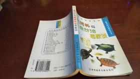 龟饲料与龟病防治专家谈/农民快速致富丛书