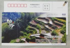湖南紫鹊界梯田-世界灌溉工程遗产--优惠明信片门票-(较少)-