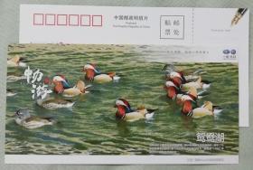江西鸳鸯湖---优惠明信片门票-(较少)-