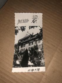 照片式贺卡 天津大学 新春快乐