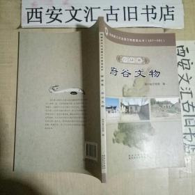 陕西第三次全国文物普查丛书—榆林卷.府谷文物