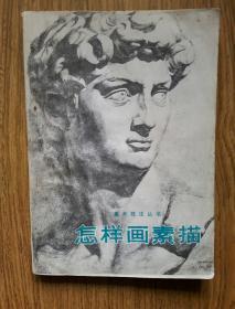 怎样画素描——美术技法丛书