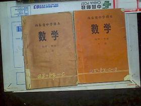 山东省中学课本数学初中一年级上下册