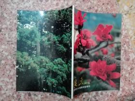 广东画报:创刊三十周年纪念特刊