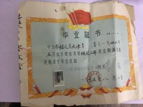 65年 江苏晓庄师范学校毕业证书