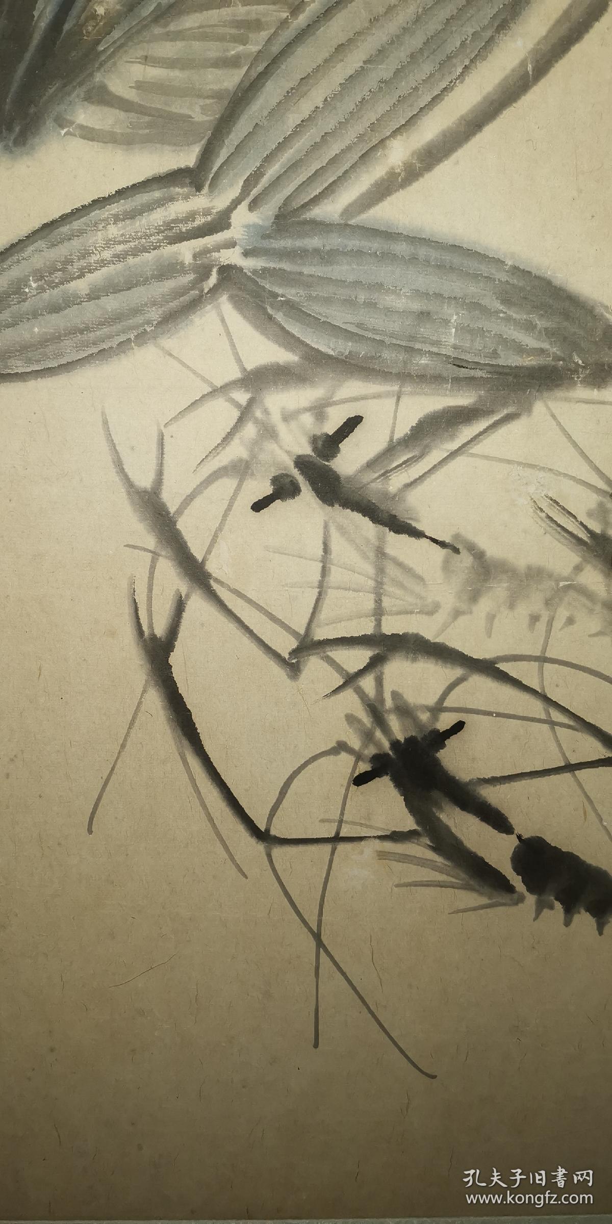 安徽萧县著名老画家(许西恒)68*45……虾图片