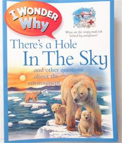 平装 i wonder why there's a hole ln the sky 我想知道为什么天空中有一个洞