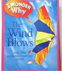 平装 i wonder the wind blows 我不知道风吹过