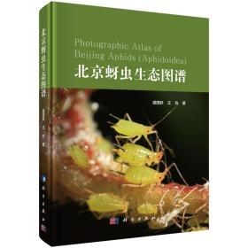 北京蚜蟲生態圖譜