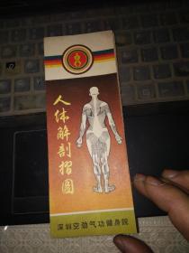 人体解剖折图(总长200厘米,宽17.5厘米;共32折。本图为两面,A面是全系统图,分骨骼、肌肉、循环、消化、呼吸、泌尿、神经、内分泌等系统,用彩色印刷;B面为局部解剖图,共105个;有详细使用说明) 举
