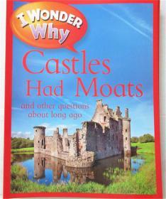 平装 i wonder why castles had moats 我想知道为什么城堡有护城河