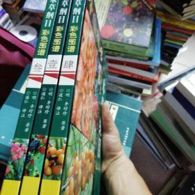 本草纲目彩色图谱(1.3.4)合售 缺第2册