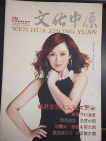 文化中原  杂志  2011  8