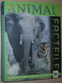 英文原版书 Animal Factfile 彩色照片图文本 by David Burnie  (Author)