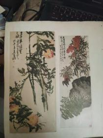 剪贴画,吴昌硕,和陈半丁作一共四副贴在一张纸板上反正面,五十年代左右