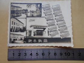 1965年【南京药学院,照片式年历片】