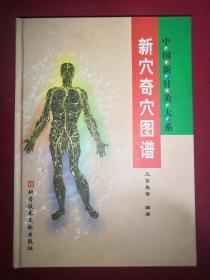 中国新针灸大系 新穴奇穴图谱  精装