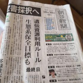 平成22年10月30日 朝日新闻