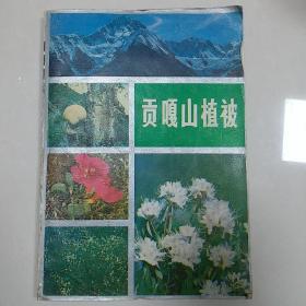 贡嘎山植被