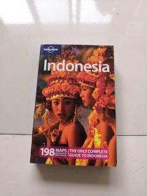Lonely Planet: Indonesia孤独星球旅行指南:印度尼西亚