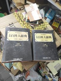 新编 名扬百科大辞典(上中册 )