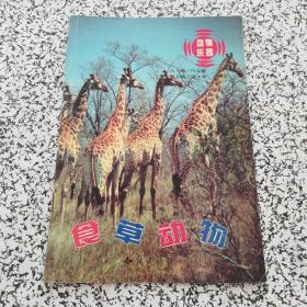 动物乐园 食草动物
