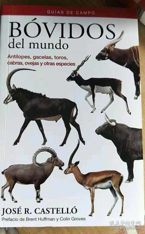 西班牙语版 BOVIDS OF THE WORLD 世界牛科动物 Mammals Guide