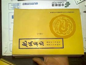 肥城县志上册