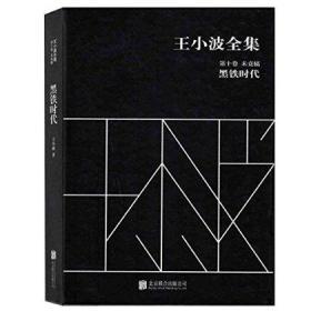 黑鐵時代-王小波全集-未竟稿-第十卷