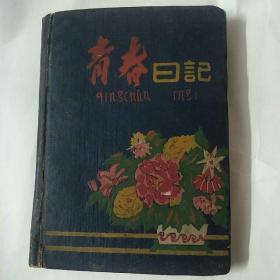 青春日记:文革日记