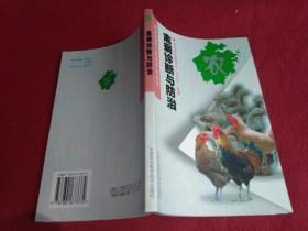禽病诊断与防治----新世纪浙江特色农业丛书